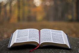 Ransum Harian PDDB - Firman Tuhan, Ya dan Amin