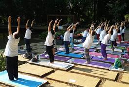 Yoga dialam terbuka, Bogor 8 May 2017
